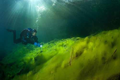 Bí ẩn dưới đáy hồ nước xanh ngắt kì ảo - 4