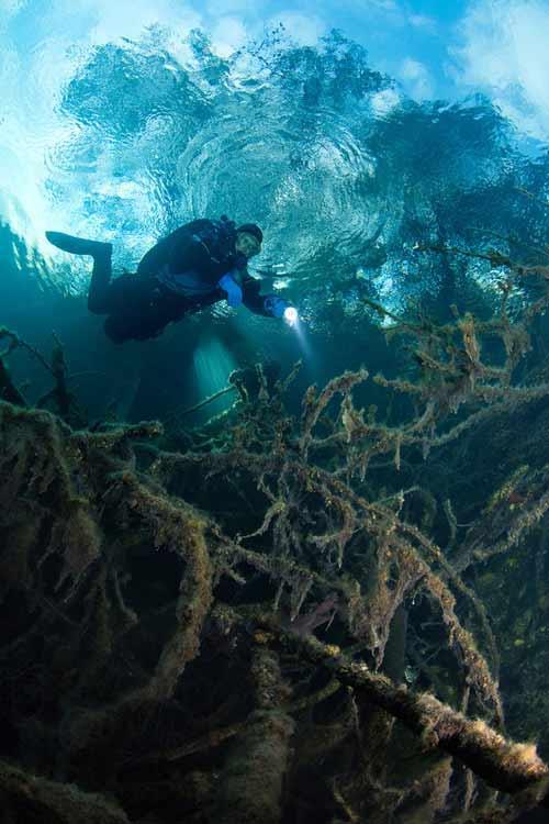 Bí ẩn dưới đáy hồ nước xanh ngắt kì ảo - 5