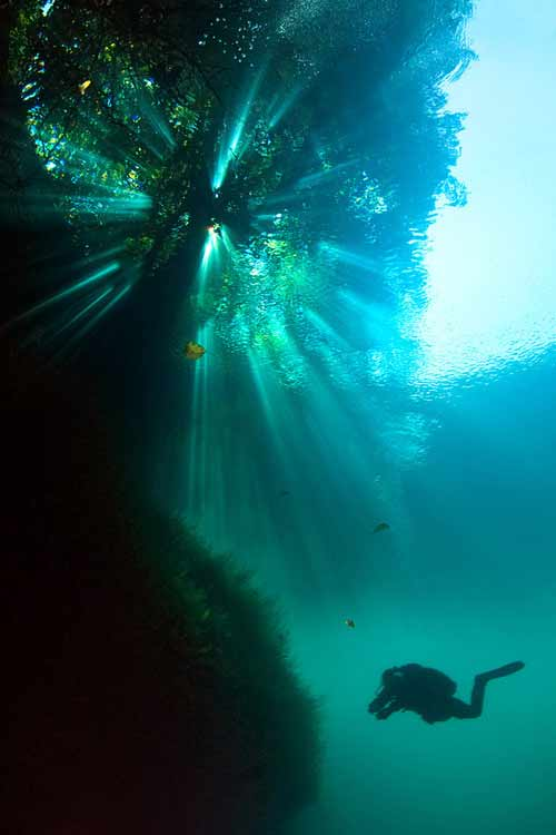 Bí ẩn dưới đáy hồ nước xanh ngắt kì ảo - 8