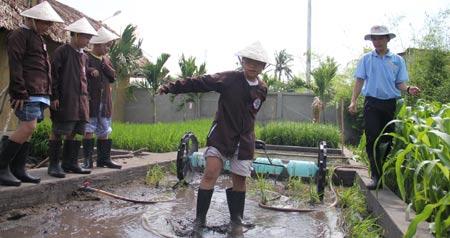 Trẻ thị thành học trồng lúa nước - 1