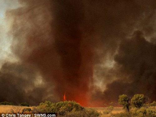 Hình ảnh ma quái về lốc xoáy lửa ở Úc - 4