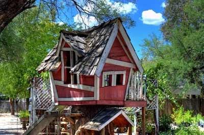 Chiêm ngưỡng nhà trên cây đẹp như trong cổ tích - 2