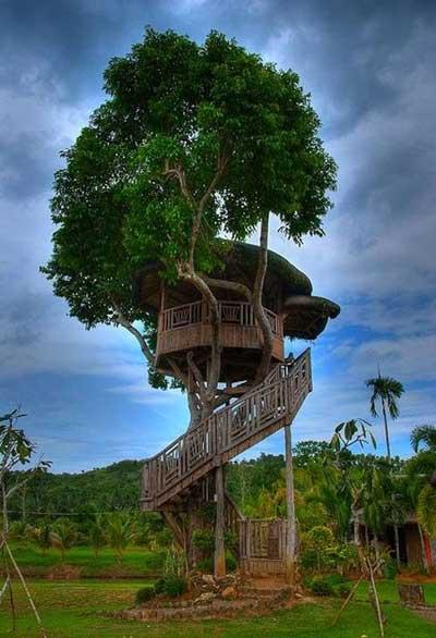 Chiêm ngưỡng nhà trên cây đẹp như trong cổ tích - 7