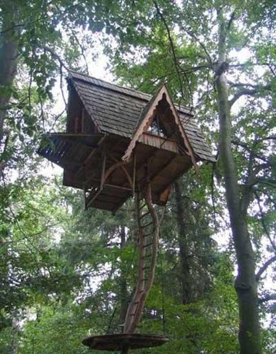 Chiêm ngưỡng nhà trên cây đẹp như trong cổ tích - 8
