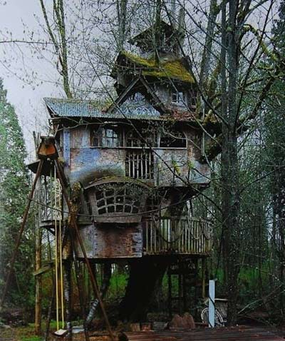Chiêm ngưỡng nhà trên cây đẹp như trong cổ tích - 10