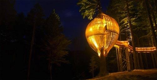 Chiêm ngưỡng nhà trên cây đẹp như trong cổ tích - 11