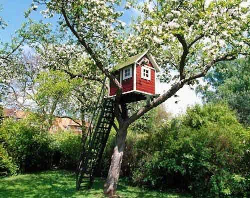 Chiêm ngưỡng nhà trên cây đẹp như trong cổ tích - 12