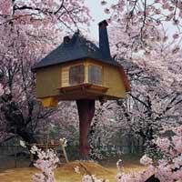 Chiêm ngưỡng nhà trên cây đẹp như trong cổ tích