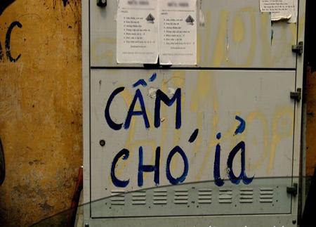 Những hình ảnh chỉ có ở Việt Nam (115) - 7