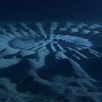 """Phi thường - kỳ quặc - """"Vòng tròn bí ẩn"""" dưới đáy biển"""