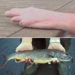Phi thường - kỳ quặc - Tìm thấy ngón tay trong bụng cá hồi