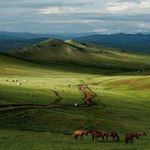 Du lịch - Kinh nghiệm du lịch Mông Cổ