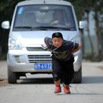 Phi thường - kỳ quặc - 7 tuổi kéo xe tải nặng 1 tấn