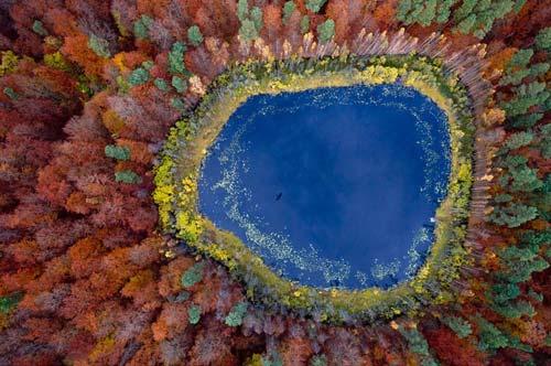 Ngắm rừng mùa thu Ba Lan từ trên cao - 2