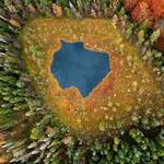 Du lịch - Ngắm rừng mùa thu Ba Lan từ trên cao