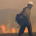 Tin tức trong ngày - Cháy rừng ở Mỹ: Người sống sót hoảng loạn
