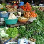 Thị trường - Tiêu dùng - Giá cả bắt đầu rục rịch tăng