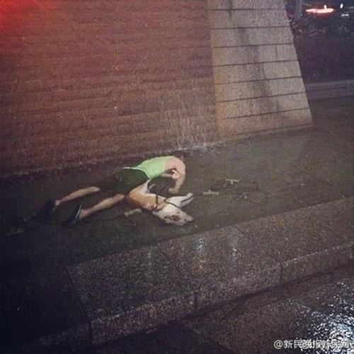 TQ: Cứu chó cưng, thanh niên Nga thiệt mạng - 1