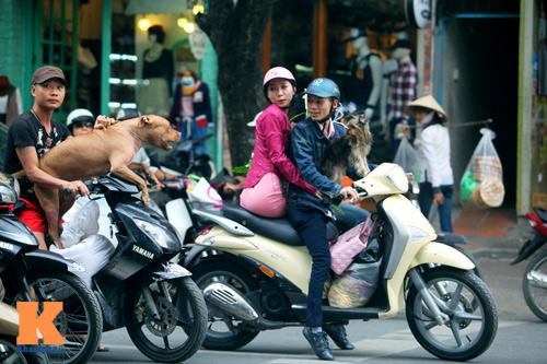 Giới trẻ vô ý thức tham gia giao thông - 12