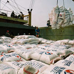 Thị trường - Tiêu dùng - VN: Xuất khẩu gạo đã đạt 4,2 triệu tấn