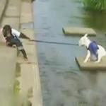 Cặp đôi hoàn cảnh: Nhất thủy nhì Khỉ