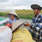 """Thị trường - Tiêu dùng - """"Nên hỗ trợ trực tiếp giá nông sản"""""""