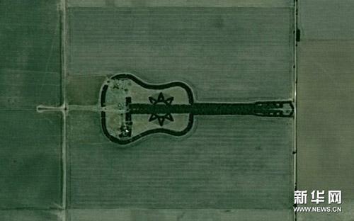 Khu rừng kì diệu hình cây đàn ghita - 4