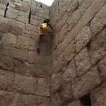 Thể thao - Người đàn ông leo tường như khỉ