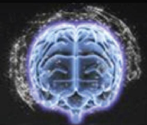10 điều không thể bỏ qua tại Enfa A+ Brain Expo - 2