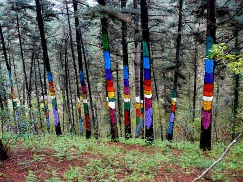 Khu rừng thần tiên ở Tây Ban Nha