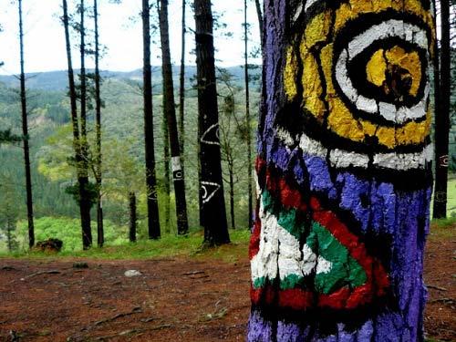Khu rừng thần tiên ở Tây Ban Nha - 4