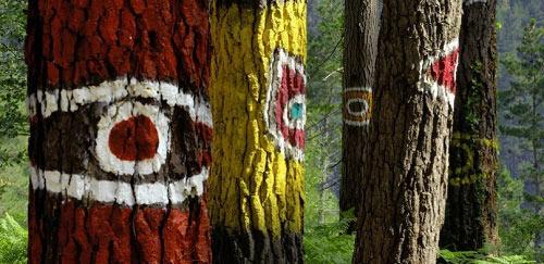 Khu rừng thần tiên ở Tây Ban Nha - 7