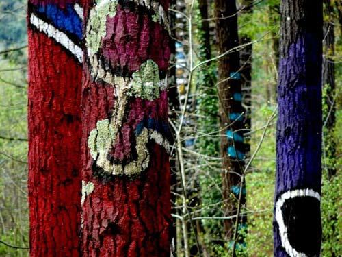 Khu rừng thần tiên ở Tây Ban Nha - 8