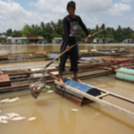Tài chính - Bất động sản - Di dời KCN Biên Hòa 1: 26.000 lao động bị ảnh hưởng
