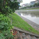 Tin tức trong ngày - Ngã sông Tô Lịch, công nhân môi trường tử vong