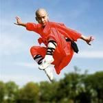 Thể thao - Thiếu Lâm trổ tài khi đối đầu Taekwondo