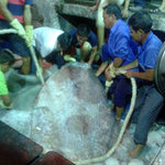 Tin tức trong ngày - Nghệ An: Bắt được cá Mặt trăng khổng lồ 400kg