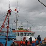 Tin tức trong ngày - Tàu chết máy, 13 ngư dân gặp nạn trên biển