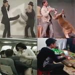 Cười 24H - Top clip: Vụ ám sát hot girl không thành
