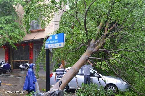 Chùm ảnh siêu bão Utor tàn phá Trung Quốc - 2
