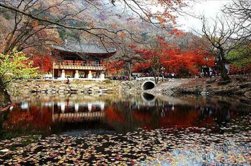Hàn Quốc trong suy nghĩ của tôi - 2