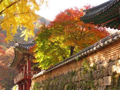 Hàn Quốc – Vẻ đẹp truyền thống - 1