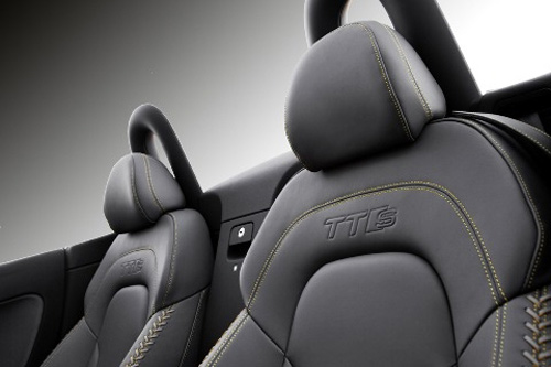 Audi TTS Competition chỉ có 500 chiếc - 10