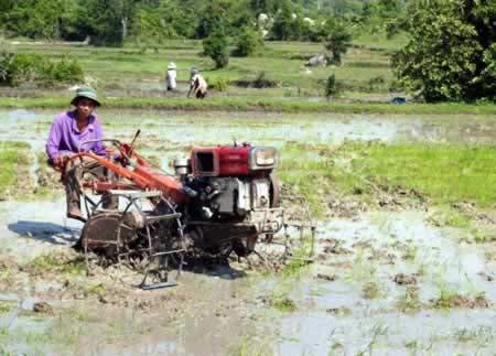 Tín dụng vẫn khó cho nông dân - 1
