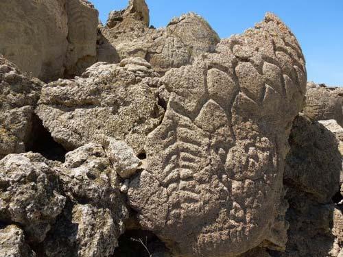 Phát hiện hình khắc bí ẩn cổ xưa nhất Bắc Mỹ - 2