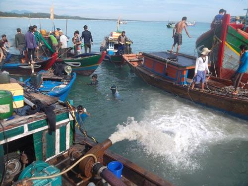 Quảng Ngãi: Lại phát hiện tàu cổ chứa cổ vật - 1