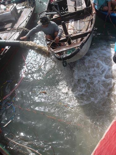 Quảng Ngãi: Lại phát hiện tàu cổ chứa cổ vật - 2