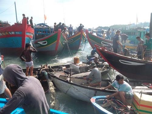 Quảng Ngãi: Lại phát hiện tàu cổ chứa cổ vật - 4
