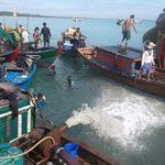 Tin tức trong ngày - Quảng Ngãi: Lại phát hiện tàu cổ chứa cổ vật