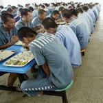 Tin tức trong ngày - Trung Quốc sẽ ngưng lấy nội tạng của tử tù